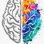 As-tu un état d'esprit Fixe ou Évolutif ? Tu risque d'être surpris…